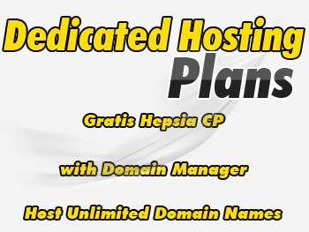 Modestly priced dedicated web hosting account